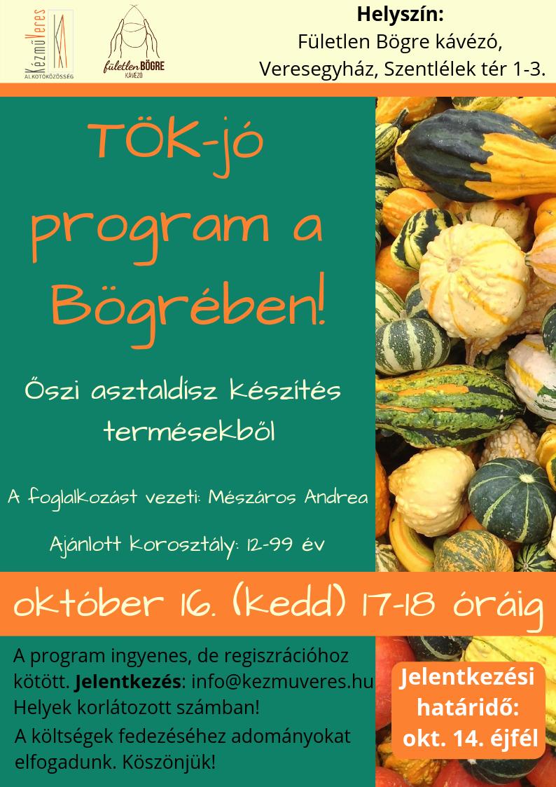 TÖK-jó program a Bögrében!